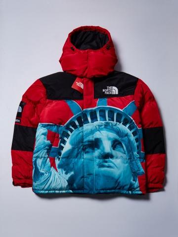 Куртка Тhe North Face Freedom