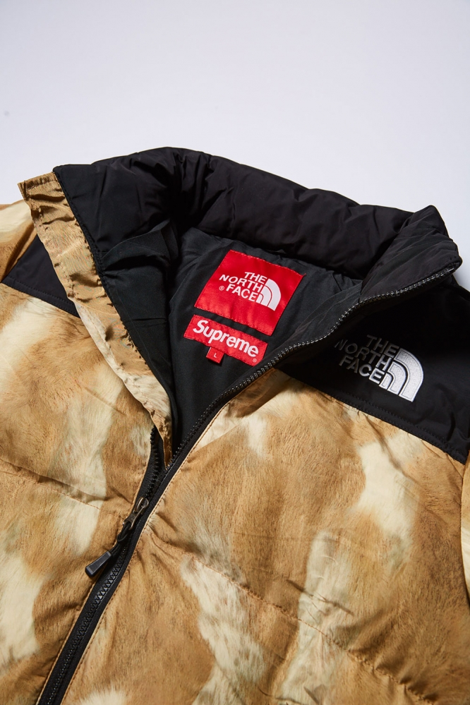 Куртка зимняя Тhe North Face x Supreme